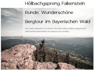 Bergtour Falkenstein